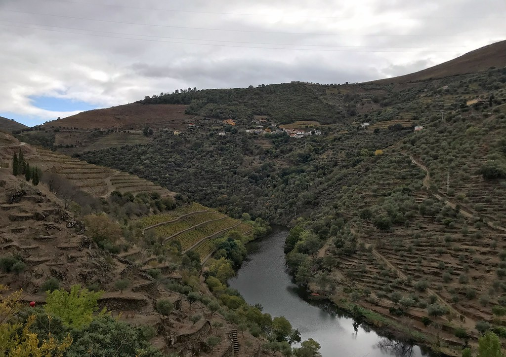 Vineyards and hills in the Douro Valley