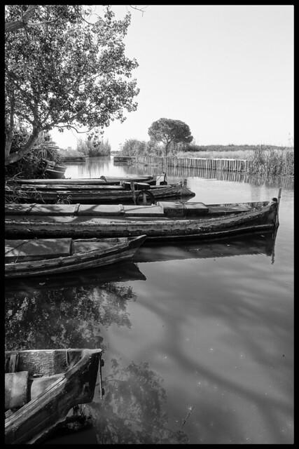 Barcas de la Albufera.