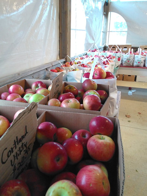 Farmstand Apple Selection