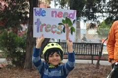 We need trees #GandolfoGardens - IMG_5939