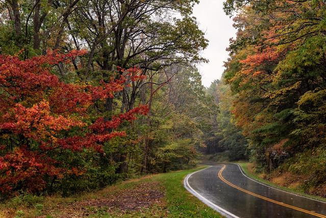 Fall Begins at Last in Shenandoah
