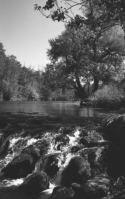 River Dobra, Lesce 05