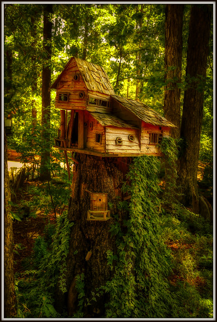 Once upon a time in the woods...