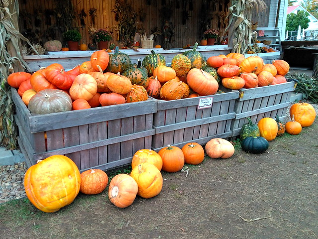 Farmstand Fall Pumpkin Display