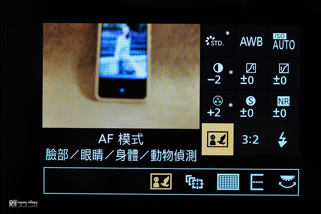 動靜皆宜的風采:Panasonic Lumix S1-S1R | 48