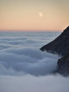 Celestial wanderer above the sea of fog