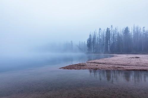 fog lake stanleylake trees reflections