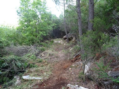 Le chemin du Carciara pendant les travaux