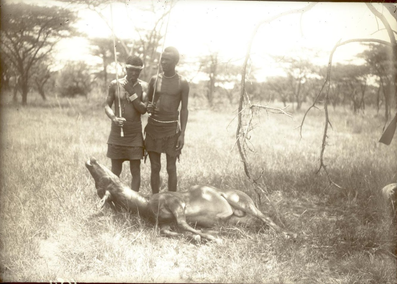 450. Район Гедда-Марокко. Охотники у убитой антилопы-корке