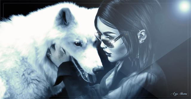 Lou contre Loup