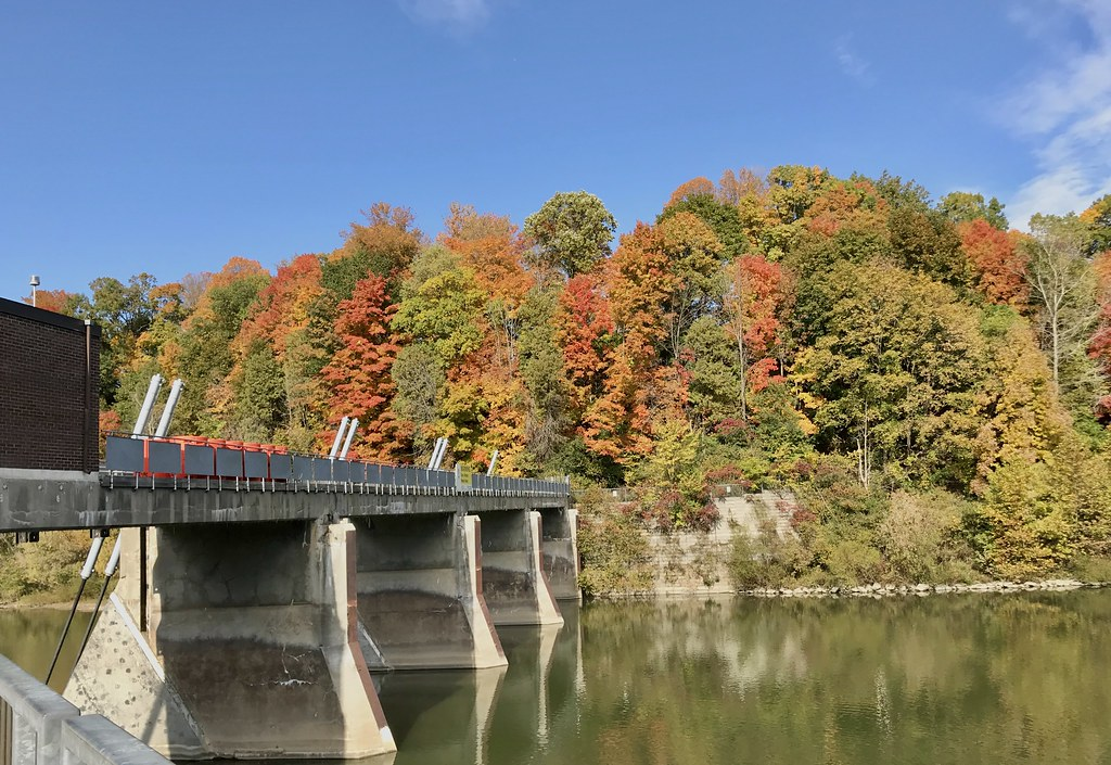 Colorful trees along the river and fall foliage in Springbank park