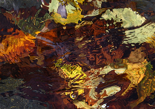 Fallen leaves in bright autumn colours under the rippling water