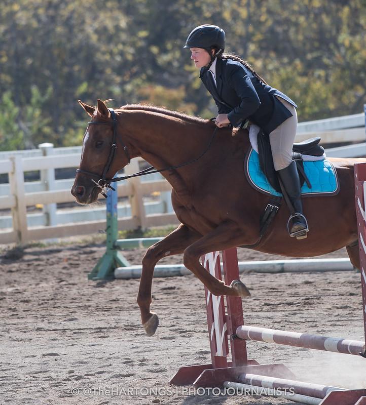 Winton Woods Riding Center Horse Show