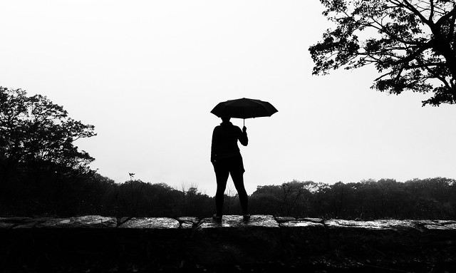 rainyday