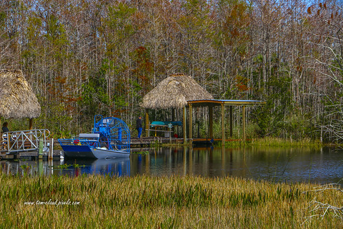 boat airboat blue tiki hut tikihut water grass grasses trees marsh nature mothernature landscape grassywaters preserve grassywaterspreserve outdoors westpalmbeach florida usa
