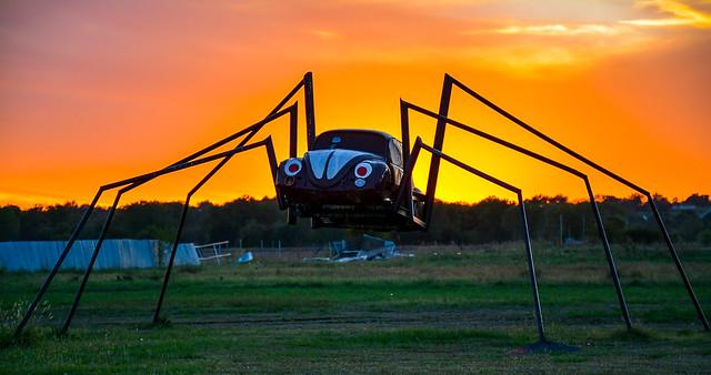 Wilson's VW Spider Bug