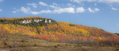 Autumn Splendour at Old Baldy
