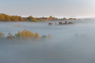 Fog Slowly Receding