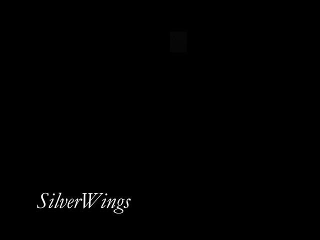 19-10-19 Silver Wings (1)