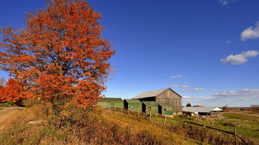 Niagara Escarpment farm, in Autumn, Caledon, Ontario