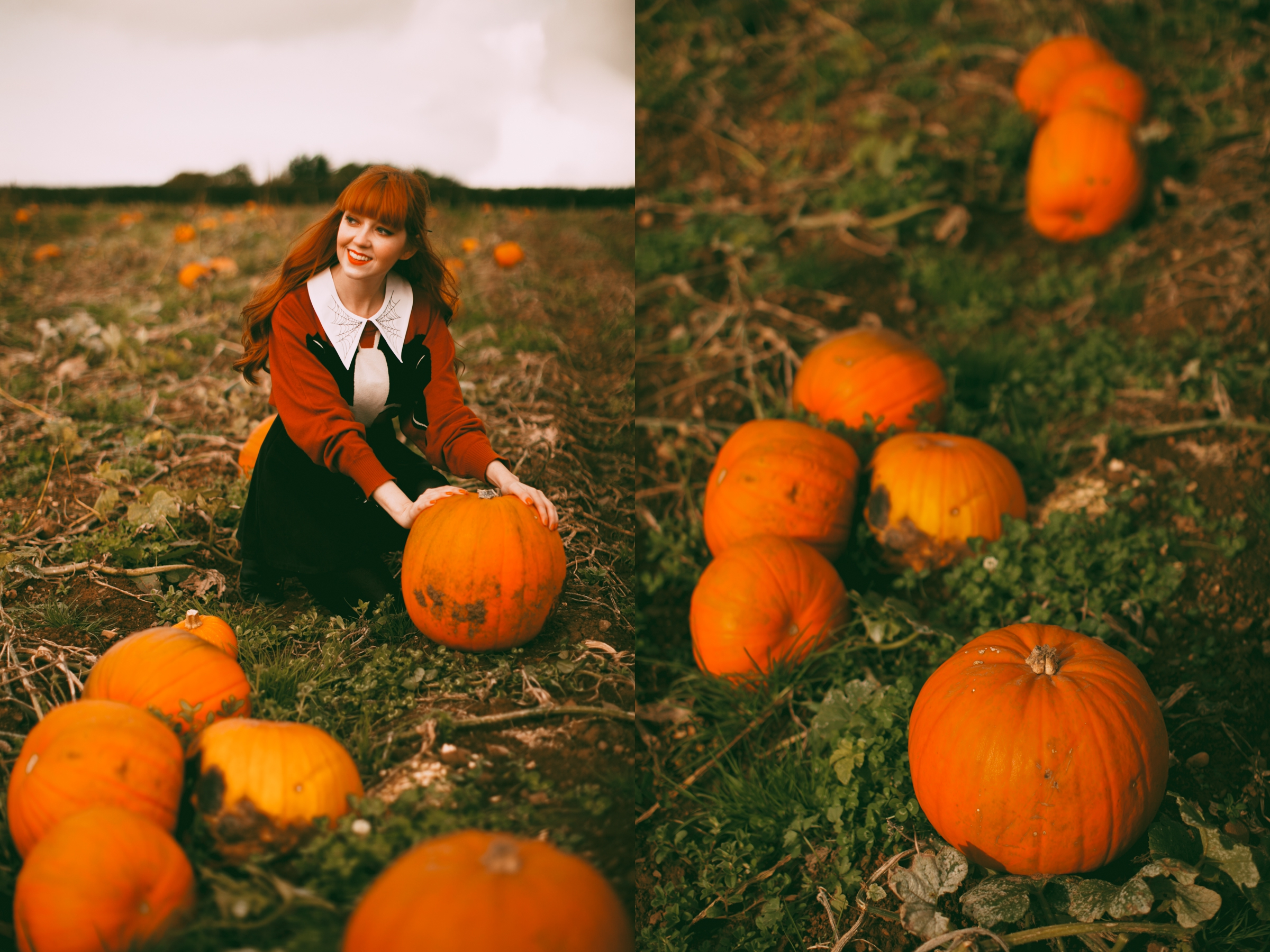 pumpkins-18-side