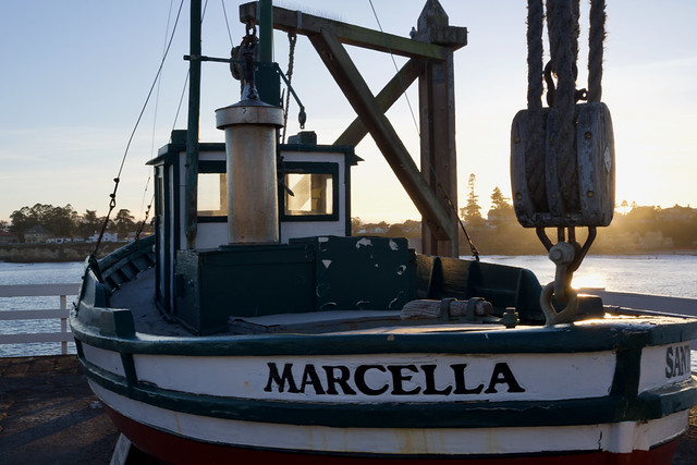 marcella at sunset
