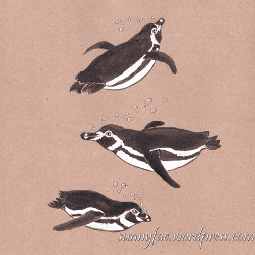 18 penguin