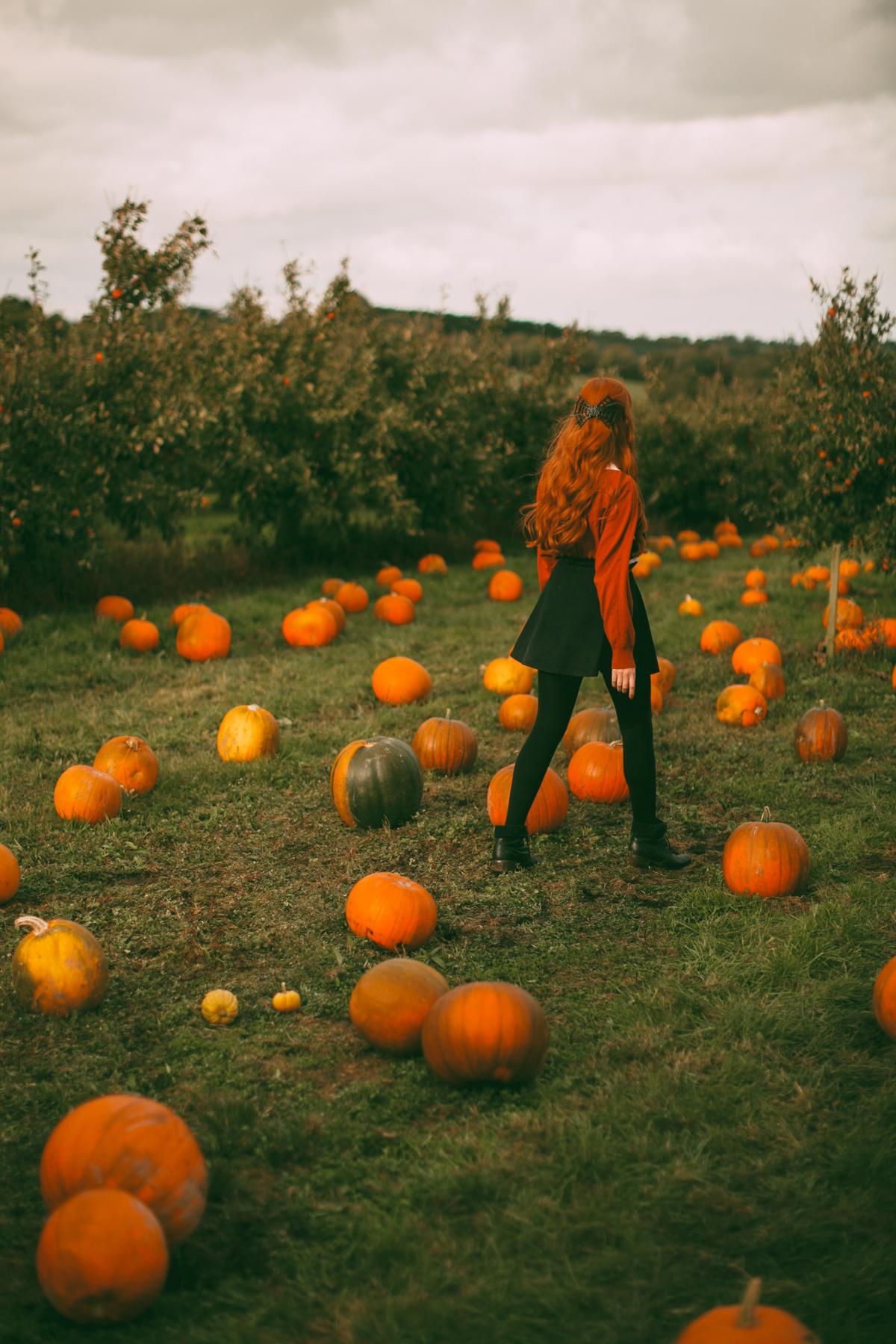 pumpkins-40