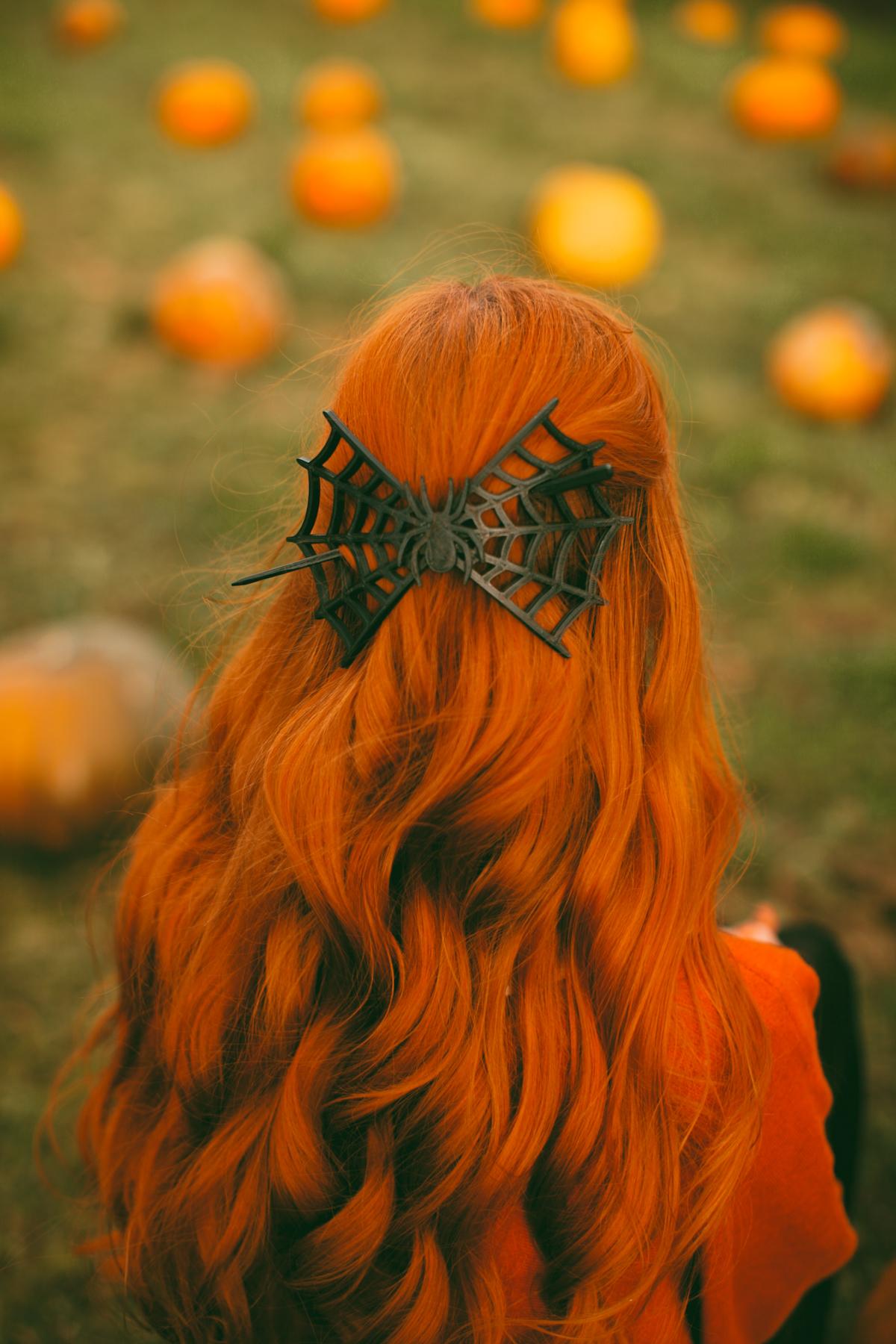 pumpkins-37