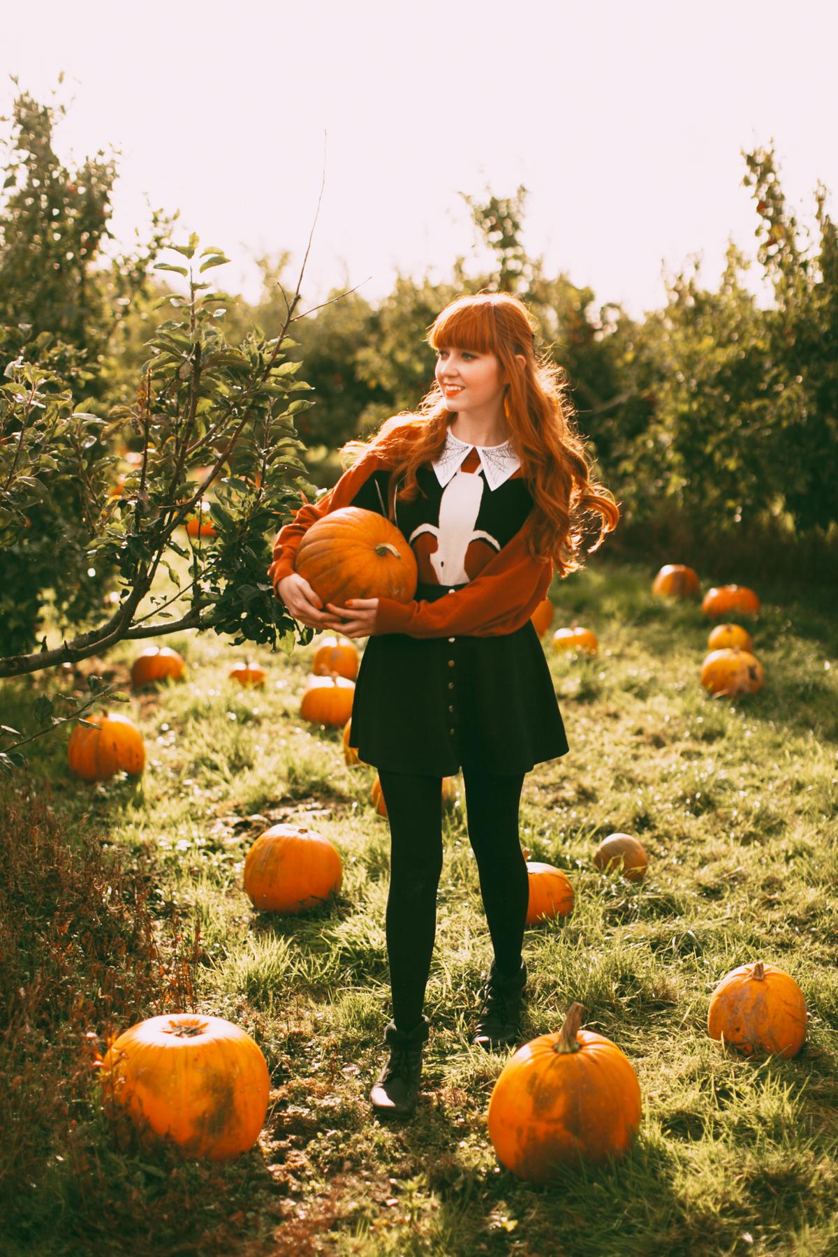 pumpkins-20