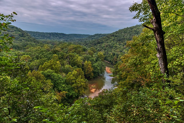 Life Has a Sweetness That Often Sours as We Age (Mammoth Cave National Park)
