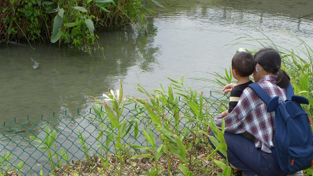 許多親子家庭來到河畔親近河水生態。孫文臨攝