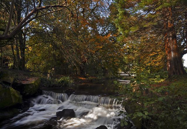 Autumnal river
