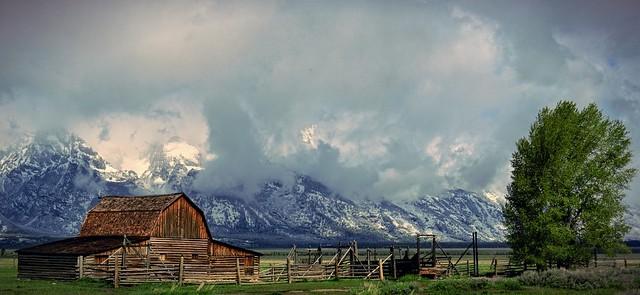 T.A. Moulton Barn - Panorama - Grand Teton Nationalpark, Wyoming