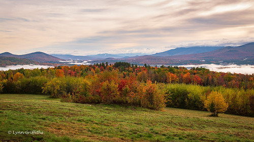 trees landscape tree audley forest lowcloud permissions fall morninglight autumnal hill mist mountain autumn landscapephotography outdoorphotography sugarhill newhampshire unitedstatesofamerica coth coth5 sunrays5