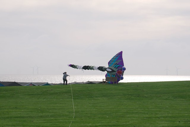 Martin Corrie Memorial Fly