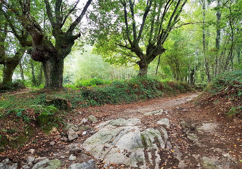 Un día en el Camino de Santiago Vía de la Plata en Allariz (8)