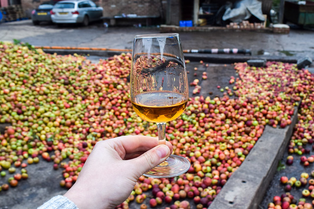 Visiting The Somerset Cider Brandy Company