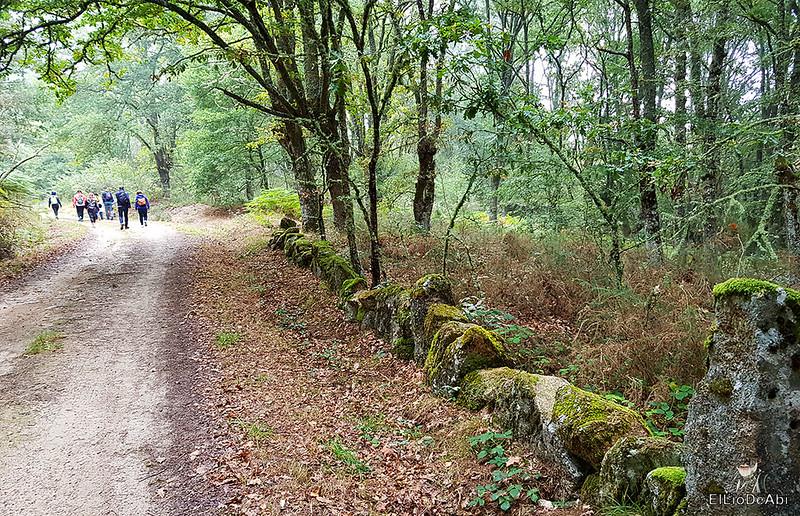 Un día en el Camino de Santiago Vía de la Plata en Allariz (5)