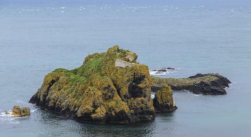 Castles everywhere.  N. Ireland.