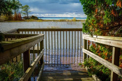 antrim lakemichigan zeisstouit32mmf18 autumn fence kewadin michigan unitedstatesofamerica