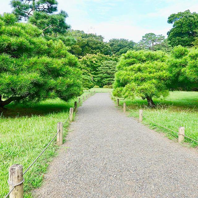 #六義園 #Rikugien #文京区 #Bunkyoku #Japan #日本 #東京 #Tokyo #日本庭園 #JapaneseGarden #都立庭園 #metropolitangarden #MetropolitanPark #metropolitan #tokyometropolitanpark