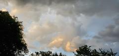Vermeer Skies