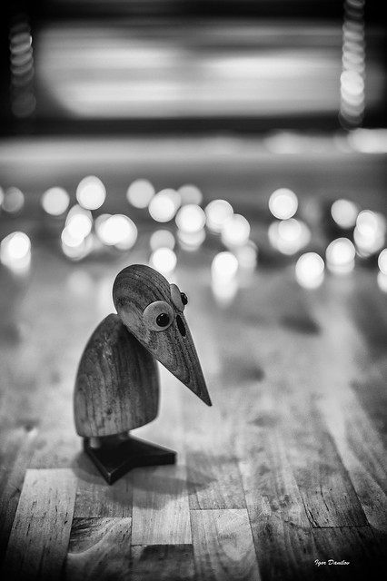Very Sad Birdie :)