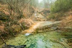 2019-01-rio del roncaccio-1-14DM4B2953