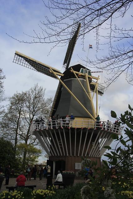 Windmill Keukenhof Gardens. Holland.