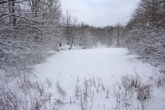 2019-01-31-lago del rudo1-IMG_6993 2
