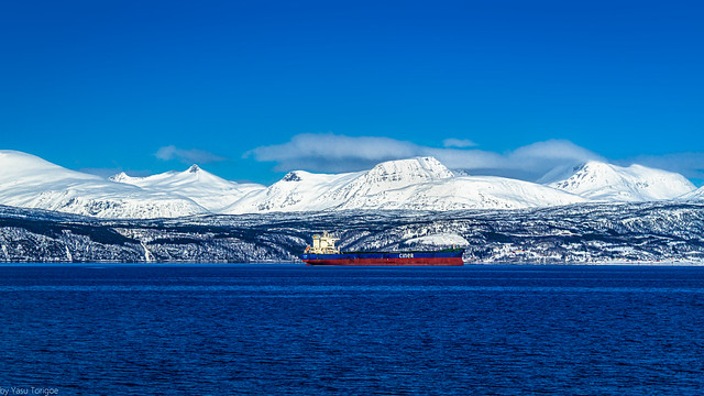 View of a tanker in Ofotfjord and the surrounding mountains across from Narvik, Norway-39a