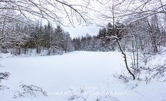2019-01-laghi morfasso neve -1IMG_7033-Pano_Fotor