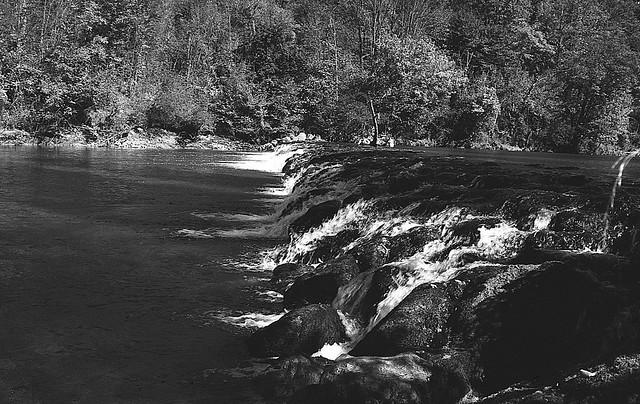 River Dobra, Lesce 06